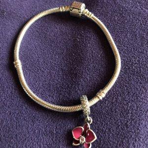 Pandora bracelet and charm